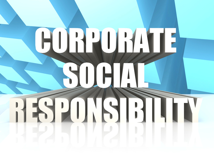 an introduction to the corporate social responsibility by lori s mohr corrigan